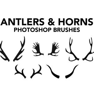 Antlers Brushes and Horns Photoshop Brushes