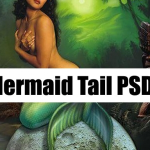 Mermaid Tail Stock