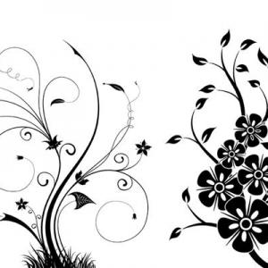 Paint swirls | photoshop download photoshop cs3 brushes.