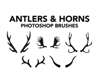Antlers and horns brushes