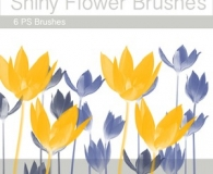 shiny flower brushes