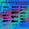 Custom Brushes of tyler street
