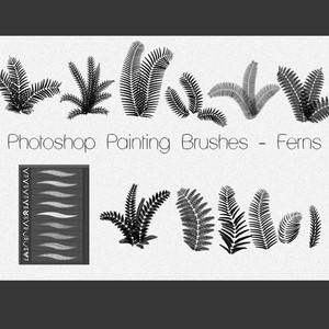 Plants Brushes