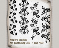 Charming Flower Borders Brushes