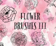 Charming Flower Brushes 3
