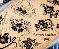 Fancy Flower Brushes