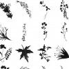 diverse plants brushes
