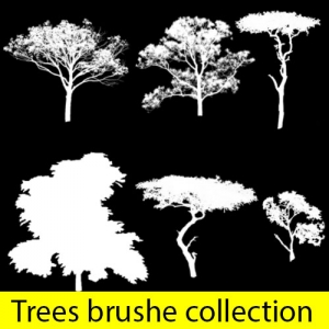 Set of Diverses Trees